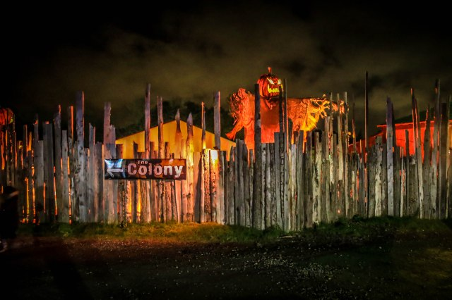 Tulleys Farm (14)