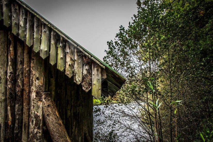 Winkworth Arboretum (7)