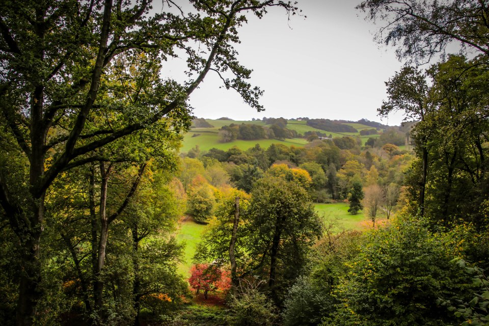 Winkworth View (1)