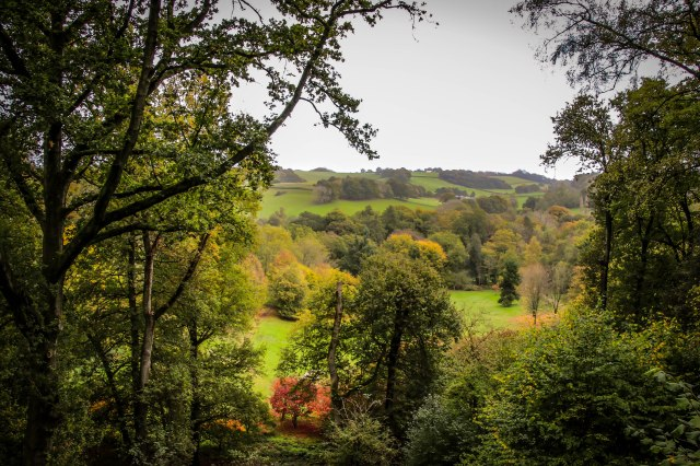 Winkworth View (1)