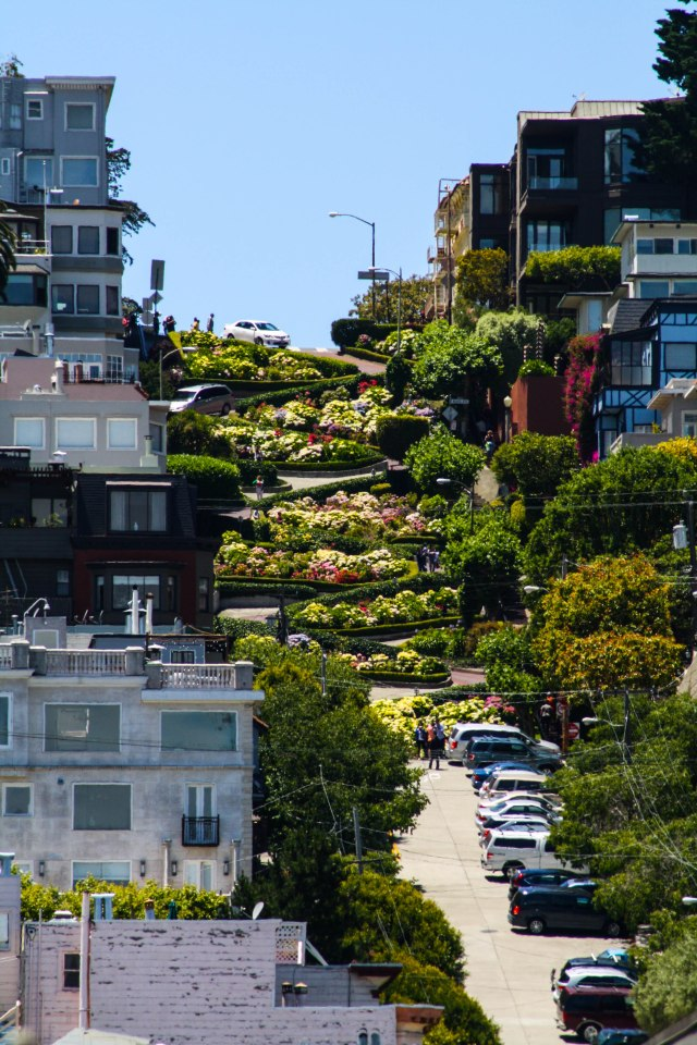 San Francisco (19)