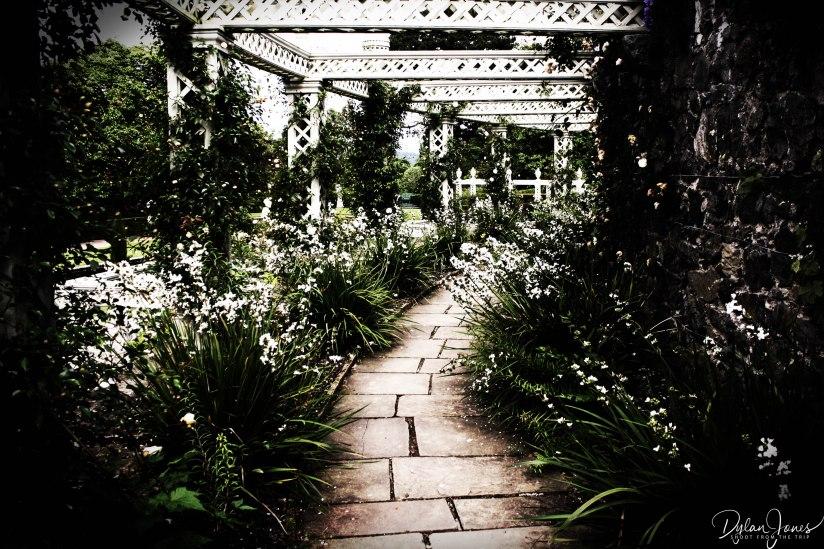 Bodnant Gardens (12)