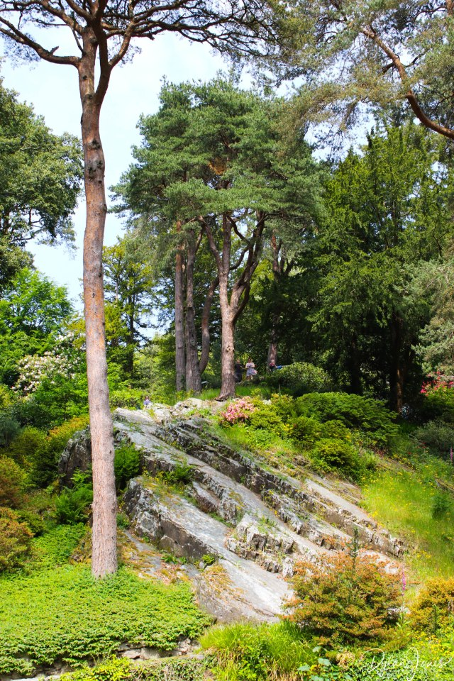 Bodnant Gardens (27)