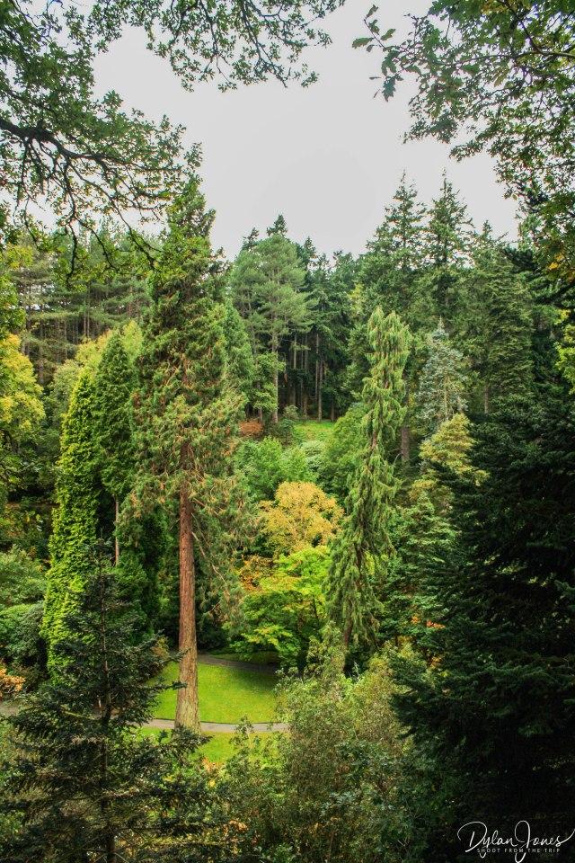 Bodnant Gardens (28)