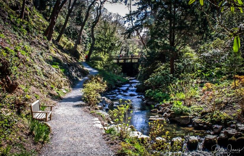 Bodnant Gardens (34)