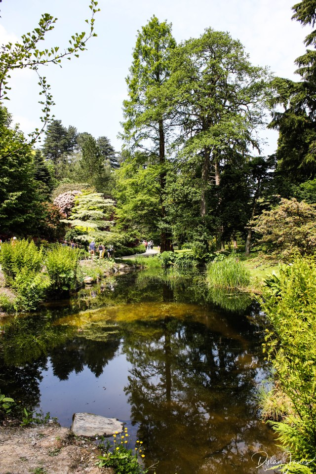 Bodnant Gardens (35)