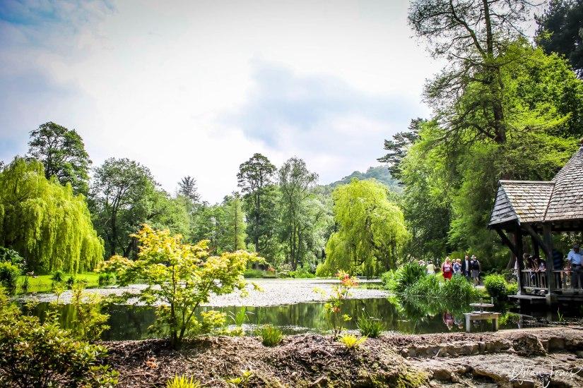 Bodnant Gardens (36)