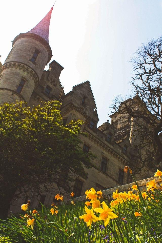 Dunrobin Castle (12)