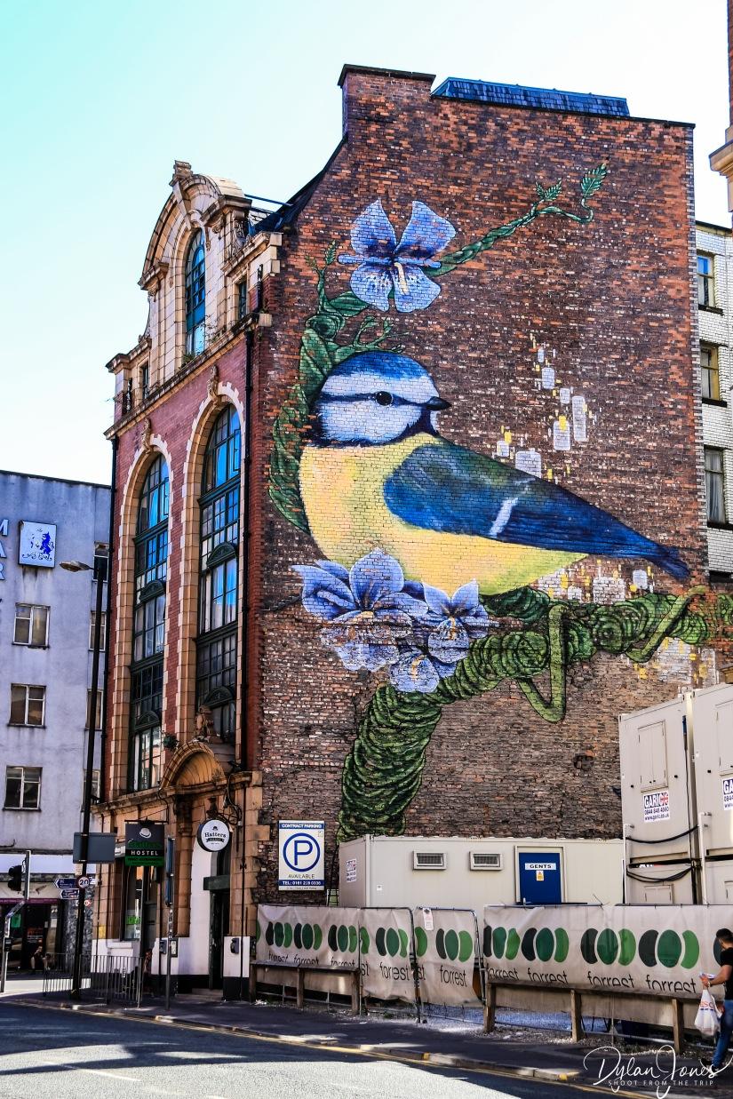 Large Murals (4)