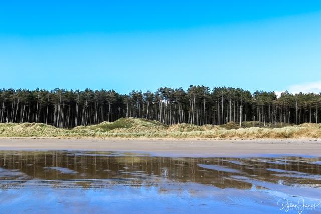 Llanddwyn Island (4)
