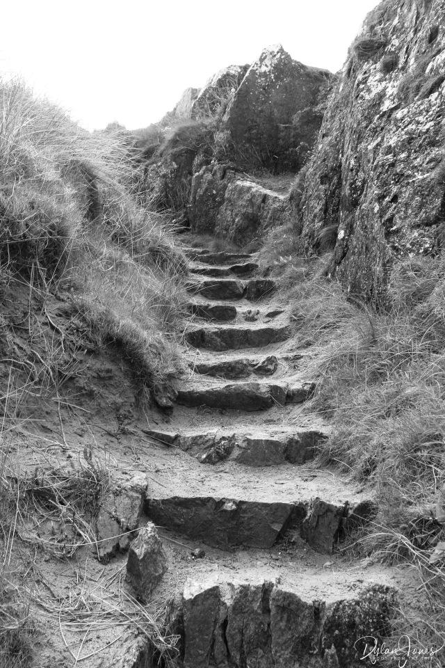 Llanddwyn Island (7)