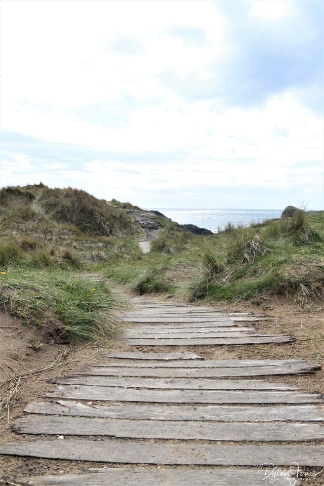 Llanddwyn Island (8)