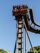 Oblivion Vertical Drop